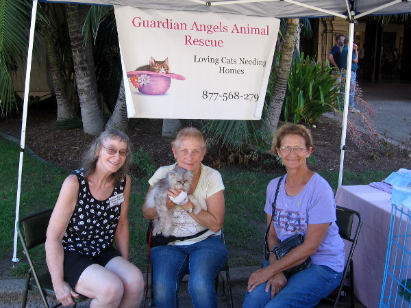 These super nice ladies are the Guardian Angels Animal Rescue, helping loving cats find new homes.