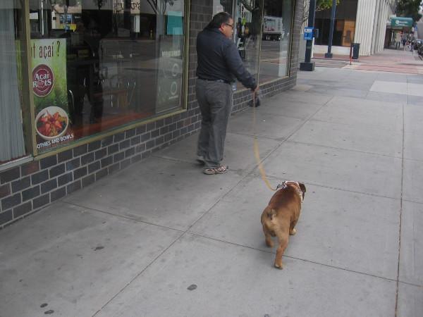 A walk down a city sidewalk.
