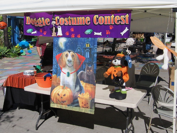 The Doggie Costume Contest in Spanish Village promised to be a fun, tail-wagging affair.