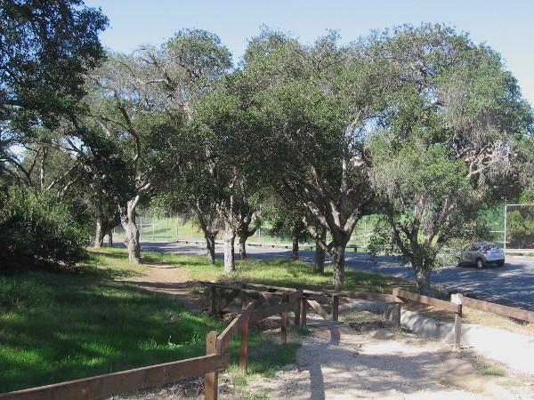 Wooden footbridge along 26th Street leads to a little-used trail through USS Bennington Memorial Oak Grove in Balboa Park.
