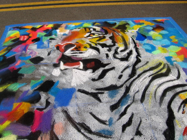 Team Noni. A very colorful tiger comes alive on the street! More zoo chalk art!