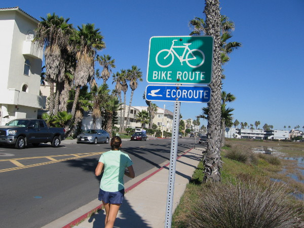 Ecoroute Bikeway and sidewalk along Seacoast Drive in Imperial Beach offers views of the north section of 2,500 acre Tijuana River Estuary.