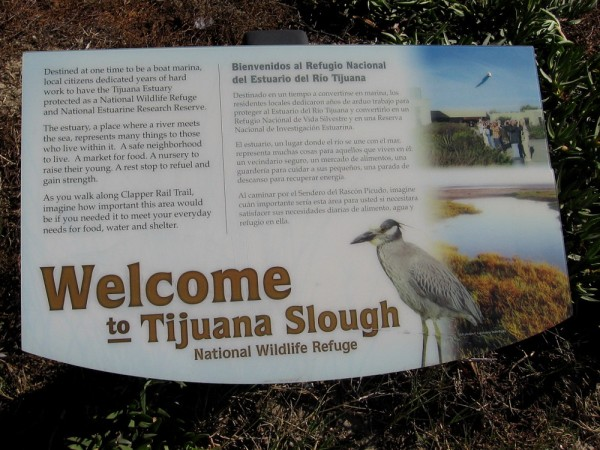 Once a dump, and destined to be a boat marina, local citizens fought to have the Tijuana Estuary protected as a National Wildlife Refuge and National Estuarine Research Reserve.