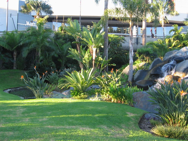 Grass, rippling water, and a mixture of shade and sunshine fill a small parklike hollow in front of the Marriott Marquis in San Diego.