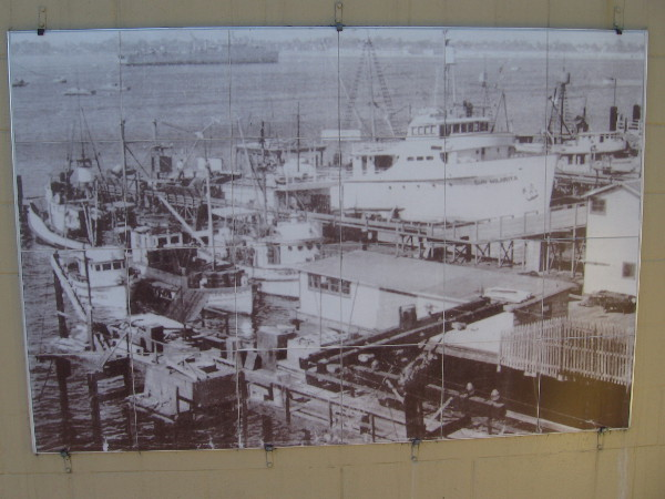 Tuna boats filled with tired fishermen arrived at the tuna canneries bringing work for hopeful dockworkers and cannery workers. Their arrival meant livelihood for countless families.