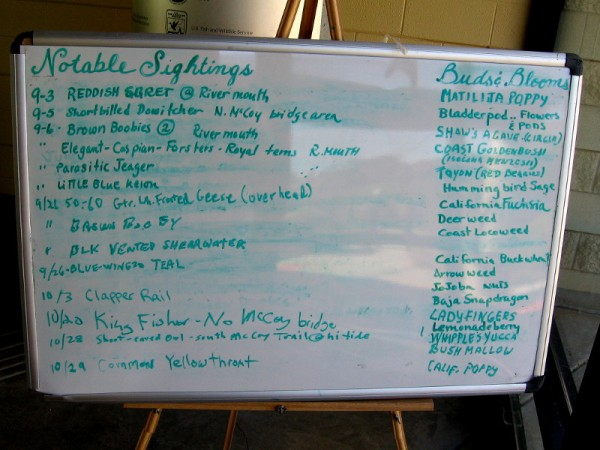 Visitors can jot notable sighting of birds on a board inside the Visitor Center. Buds and blooms are also listed.