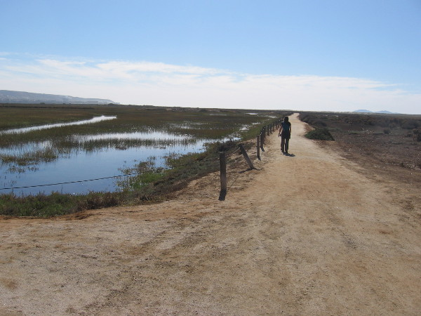Hiking south down the North McCoy Trail in the Tijuana Estuary. Rising on the left horizon is Mexico. On the right horizon are the Coronado Islands in the Pacific Ocean.