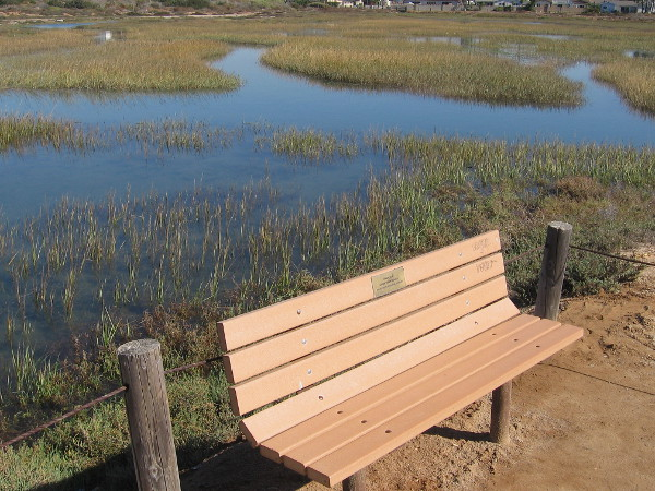 A quiet bench on the North McCoy Trail invites walkers to relax and take in the sunshine and surrounding tranquility.