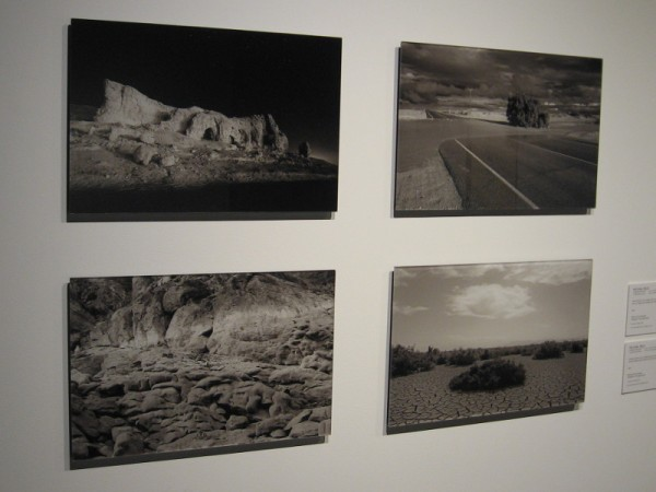 Four pigment ink photographs of desert environment by Michael Feld record beauty and natural history.