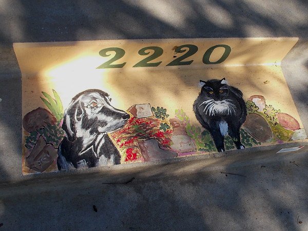I spotted a cool doorstep by the sidewalk. It seems a resident's dog and a cat have their own special place!