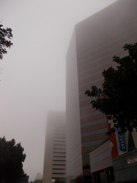 The magical, mysterious fog made the forms of buildings seem like abstract things emerging from some other world.