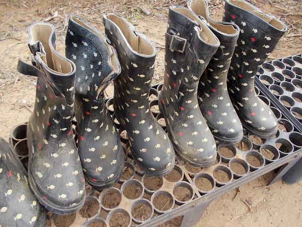 A row of waterproof boots await volunteers.