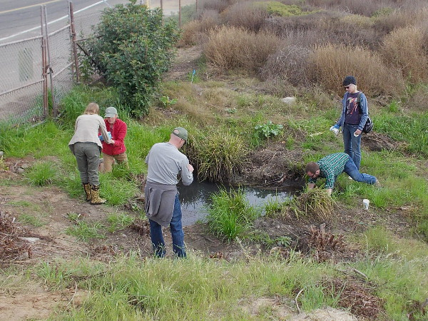 Water from a storm drain is collected by volunteers for testing.