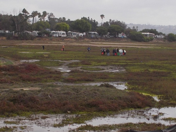 After putting on boots and grabbing buckets, a gang of volunteers is out in the marsh seeing it up close and removing unwanted debris.