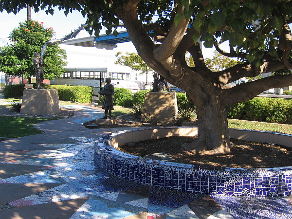 Coral tree planted by a cannery maintenance person decades ago is a feature of the Cannery Workers Tribute at Parque del Sol.