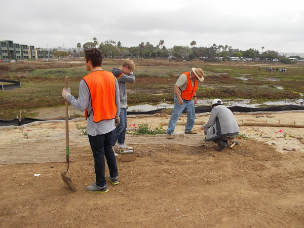 Volunteers help to restore wetlands in Mission Bay. Do you live in Pacific Beach or in San Diego. With a little elbow grease, you can make a big difference!