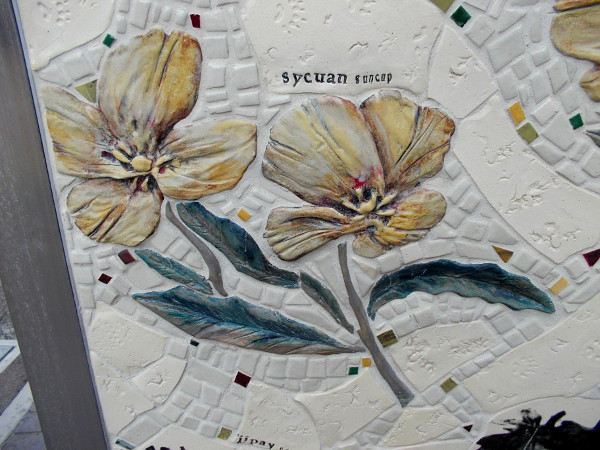 Yellow Sycuan Suncups grace this gorgeous, detailed public artwork in downtown San Diego.