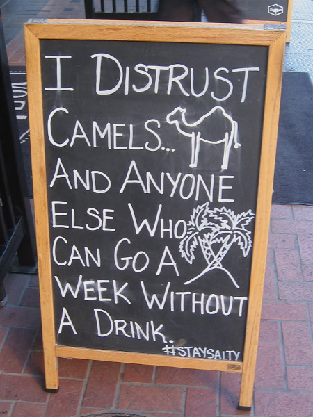 I distrust camels and anyone else who can go a week without a drink.