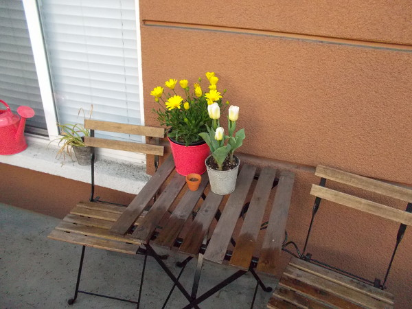 Some yellow blooms on a small table in the front patio of a Little Italy residence.