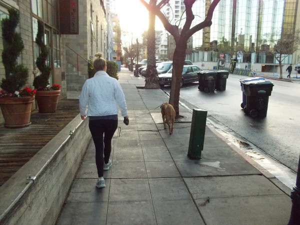 Walking with the dog up a sidewalk in Little Italy, early one spring morning after some rainfall.