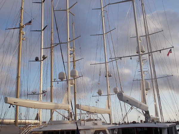 The masts of three large yachts in a row, like vertical beams of light.