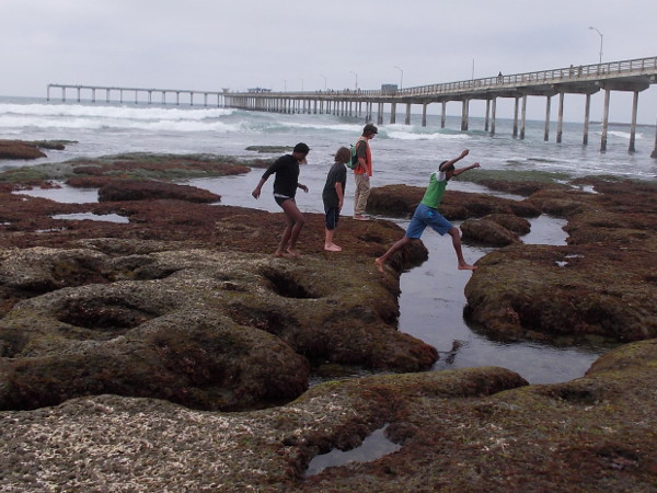 Carefree kids jump while exploring the tide pools just south of the Ocean Beach Pier.