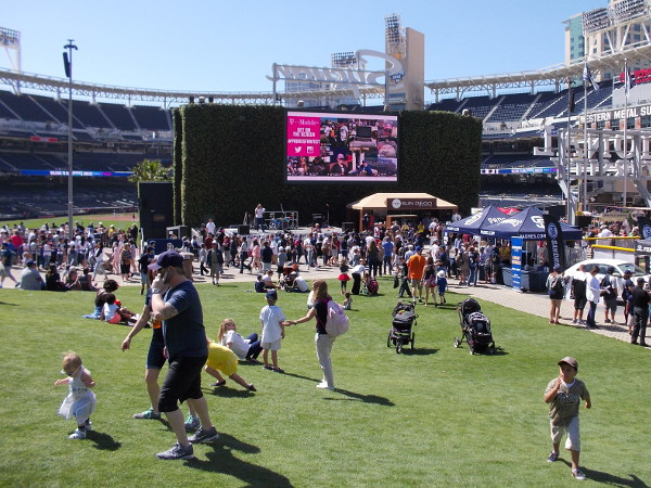 Thousands of fans turn out to get a preview of the Padres' 2016 baseball season. There were many family activities throughout Petco Park.