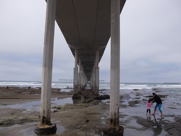 Under the Ocean Beach Municipal Pier, which is the second longest pier on the West Coast.
