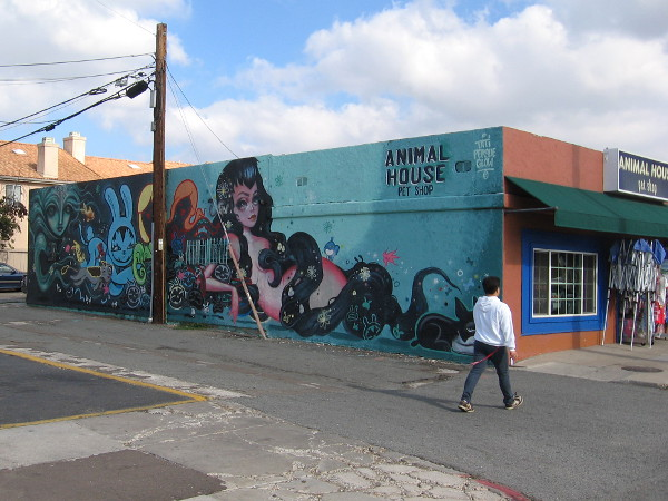 The Animal House Pet Shop has a big, cool mural spray painted on its side.