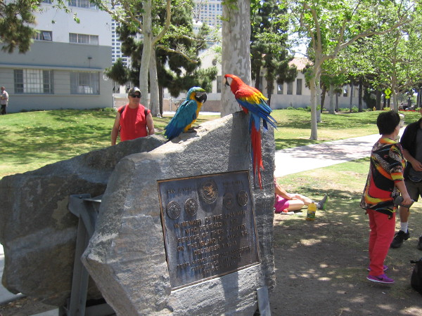 Two parrots on the Pearl Harbor memorial plaque near the USS Midway. Behind it is the Navy Bicentennial plaque, whose mysterious origin was revealed by visitors to this blog!