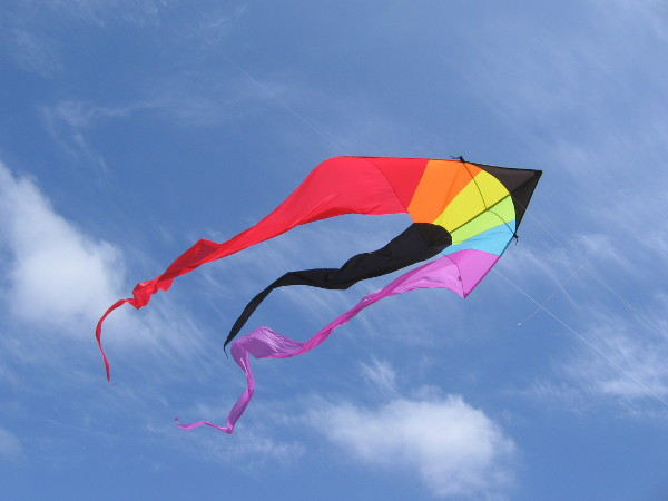 And high above those bubbles was this kite. I love San Diego.