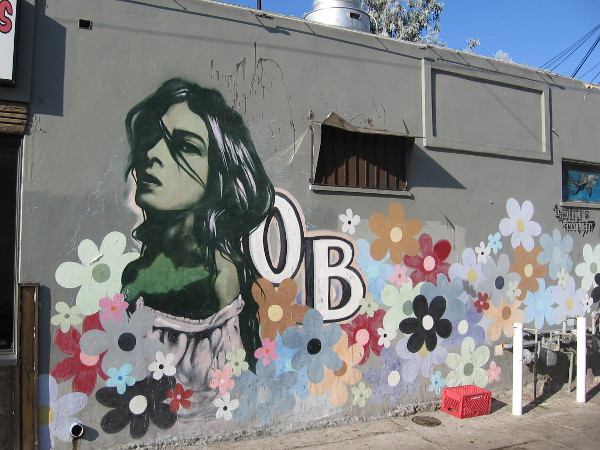 Wander the streets of OB and you'll encounter all sorts of very cool urban art, including many colorful faces.