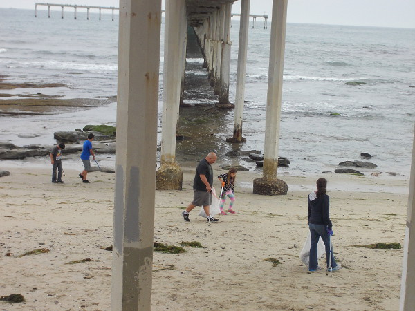 Cool people search under the Ocean Beach Municipal Pier for litter. I love a clean San Diego!