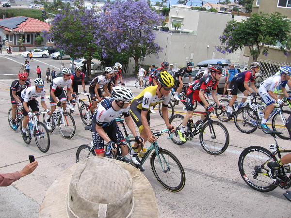 Many of the world's top bicycling athletes fly up the Laurel Street hill in San Diego during the first stage of the Tour de California.