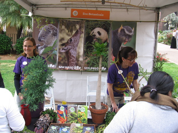 A botanicals exhibit explained how the San Diego Zoo isn't merely saving endangered animal species, but saving rare plants, too! I'm going to blog about it shortly.