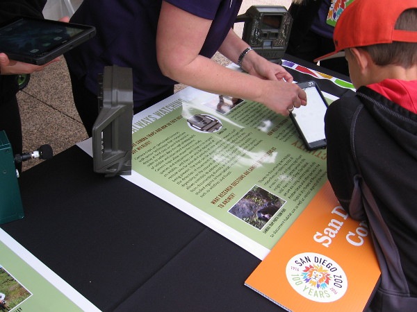 Another exhibit showed how the zoo helps wildlife researchers using modern digital recording technology in the field.