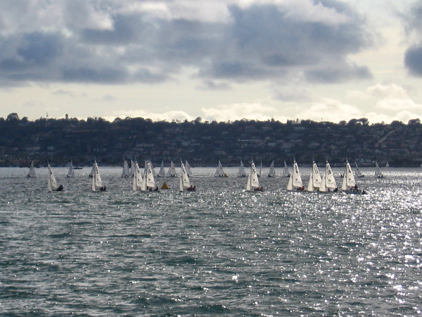 Shining sails dance in the wind, as paired sailors from 36 colleges around the country compete in the Women's Nationals.