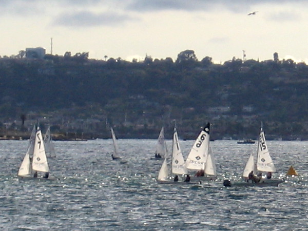 A zoomed photo of the sailboats dancing across San Diego Bay.