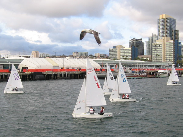 And then a few minutes later they are off again! A seagull watches the sails dip and tack over the water like white wings.