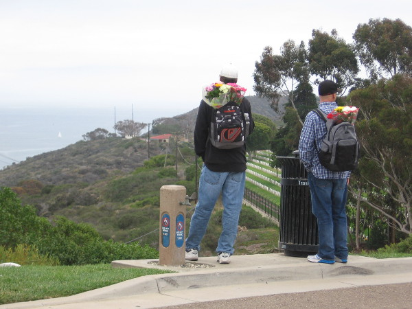 These two guys had bouquets in their backpacks. They are gazing along the Point Loma peninsula in the direction of Cabrillo National Monument.