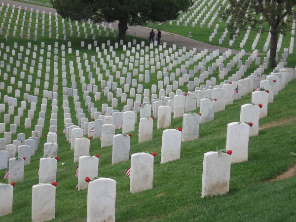 A deeply moving sight. Solemn rows of white on rolling green hills. Volunteers have adorned every grave with an American flag and rose.