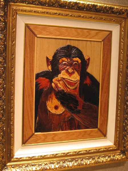 Yeah, some days this pensive chimp could easily outwit me. Thinking, Various, Daryoush Ababaf.