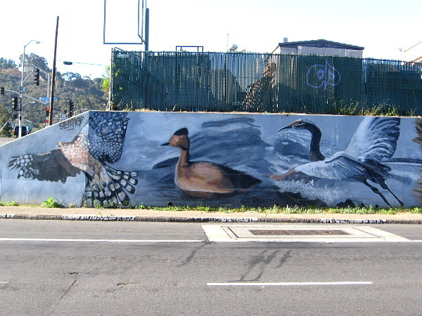 The left end of a long, colorful mural in Mission Valley. Birds of the air and water are featured here. The art was designed by Lori Escalera in 2009.