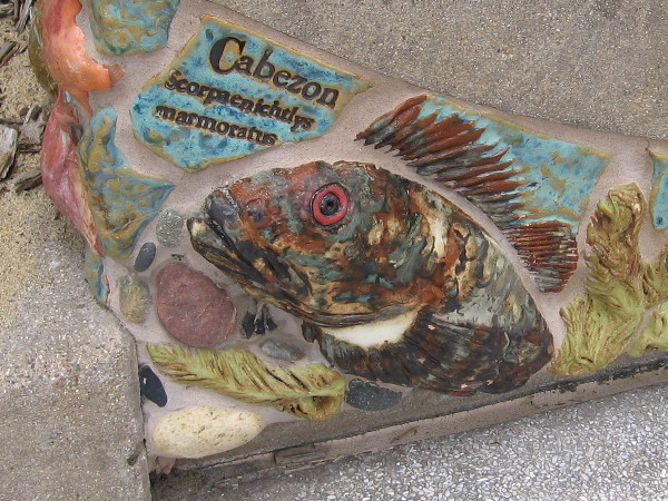 This lifelike Cabezon seems to be looking directly at you!