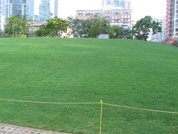The grass in the Park at the Park is becoming lush and green. The statue of beloved Mr. Padre, Tony Gwynn, will have a great view of fans enjoying the 2016 All-Star game.