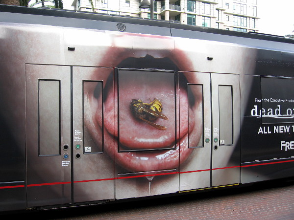 A dead bee lying on the tongue of an open drooling mouth. Not sure about the meaning, but the image is memorable and disturbing!