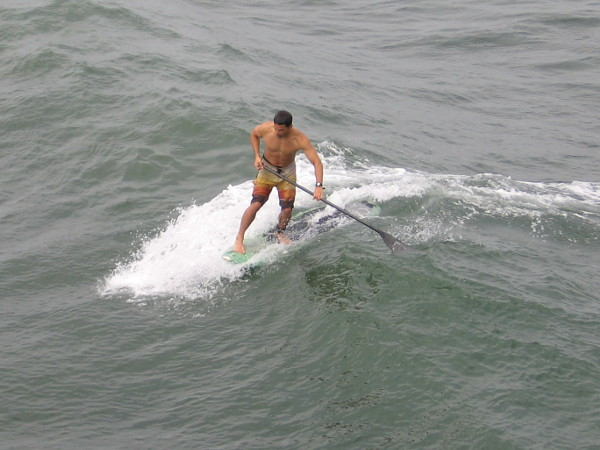 A stand up paddle surfer next to the OB Pier. It's possible to watch a lot of surfing action from the top of the pier on almost any given day.