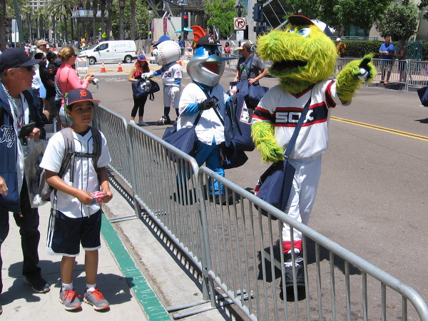 A riot of happy baseball mascots in San Diego for the MLB All-Star Game! Now I spot Billy the Marlin!
