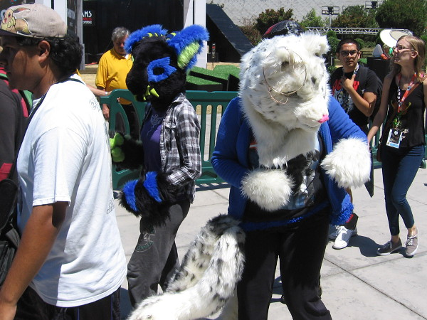 I haven't a clue who these big fuzzy critters are. Do you know?