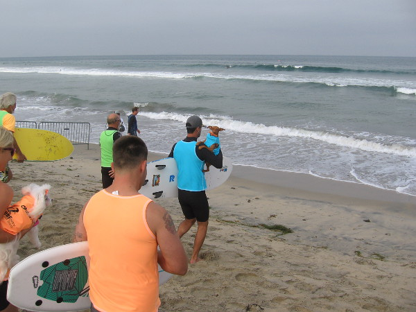 And these small surf dogs are off, making toward the Pacific Ocean with the help of a few human assistants!